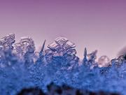 4th Dec 2018 - frost crystal
