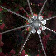 8th Dec 2018 - Sparkle and Poinsettias