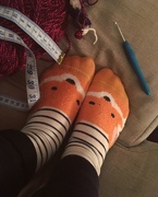 8th Dec 2018 - Fox Socks