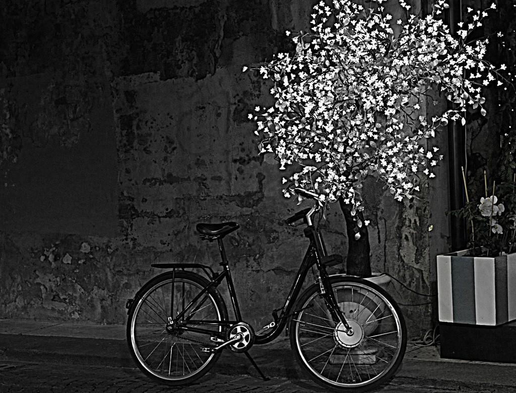 festive bike by caterina