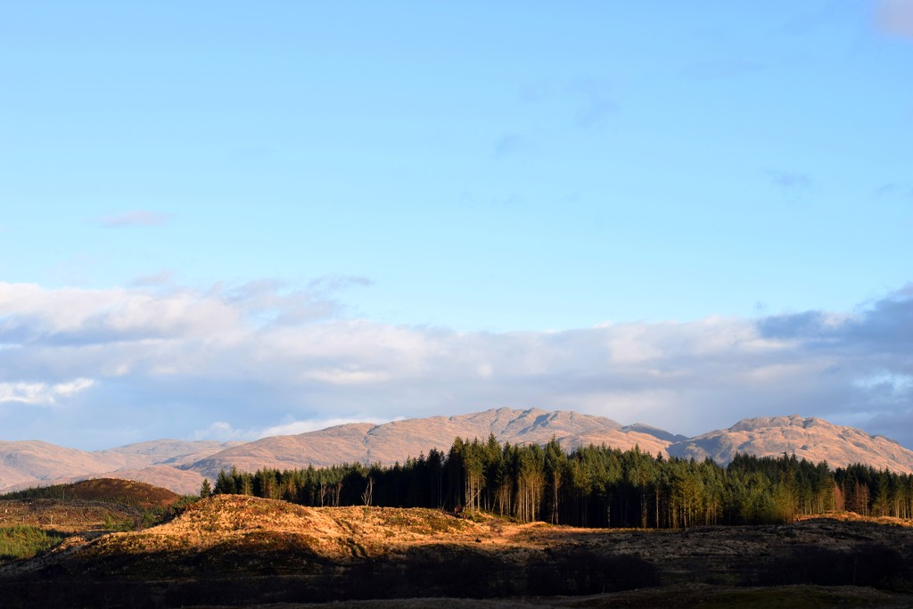 sunlit uplands... by christophercox