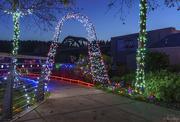 9th Dec 2018 - Bridge Framed At Christmas
