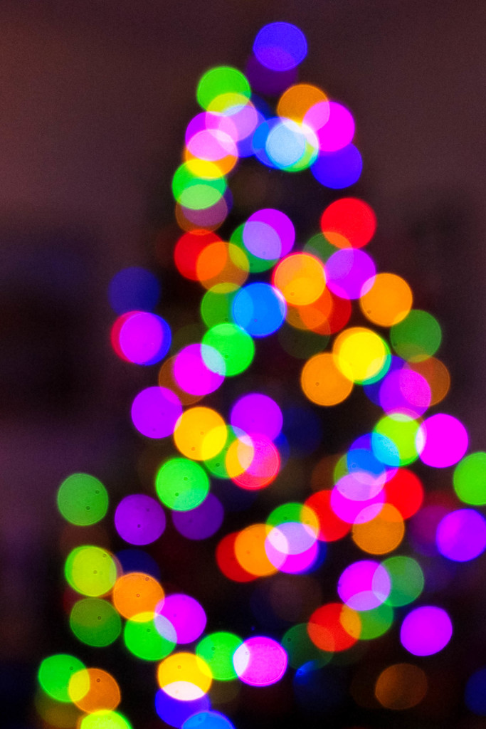 Bokeh Christmas tree by mittens