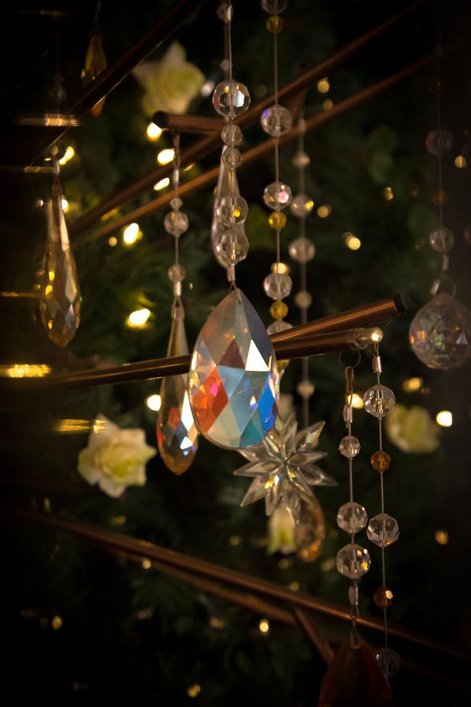 Sparkles by peta_m