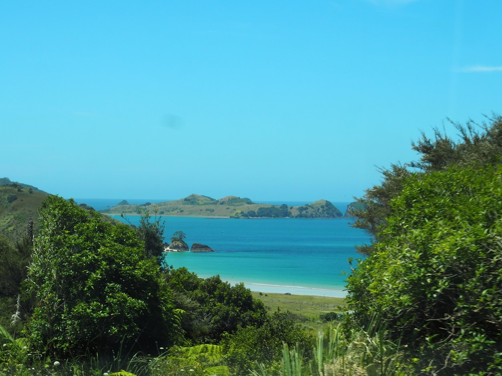 Another perspective of Matauri Bay by Dawn