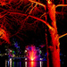 Roma Street Parklands lit for Christmas by hrs