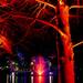 Roma Street Parklands lit for Christmas