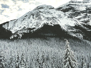 7th Dec 2018 - BC Mountains