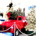 Red truck -  parcels and two christmas trees