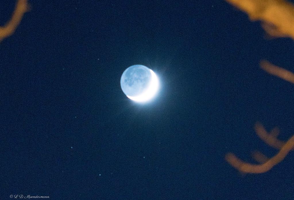 """Starburst Moon""! by Weezilou"