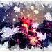Critter Carols 3