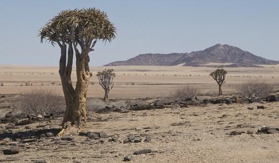 Namibia by helenhall