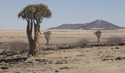 2nd Dec 2018 - Namibia