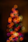 13th Dec 2018 - Christmas Tree