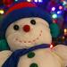 Frosty's back