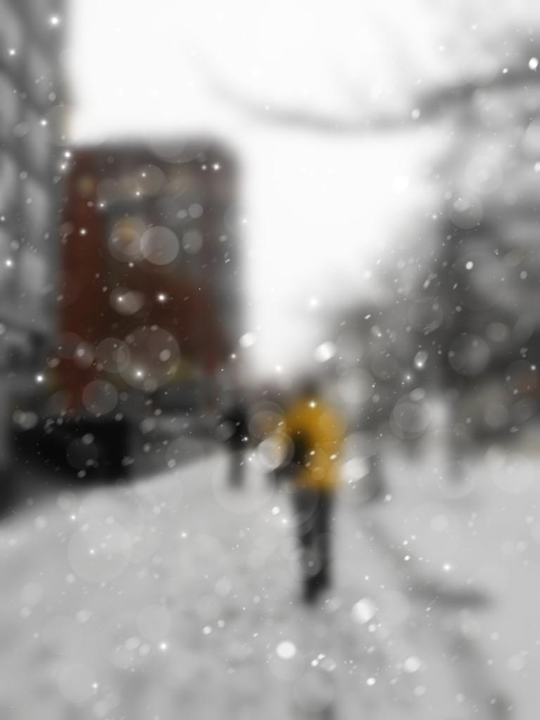 Snowy Elgin by adi314