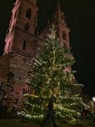 14th Dec 2018 - Christmas tree on the Münsterplatz.