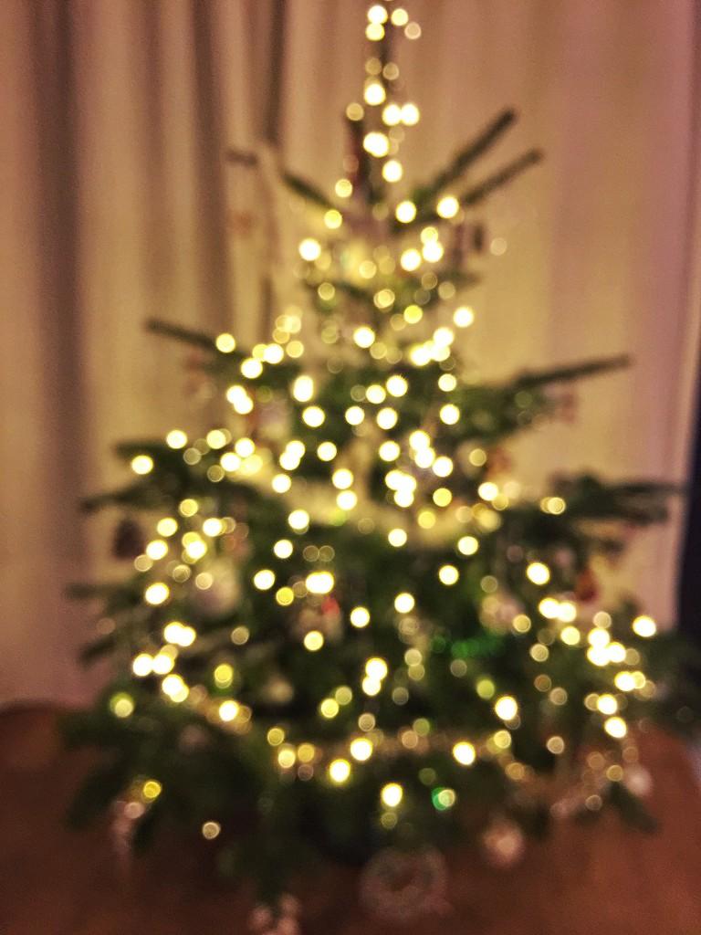 Bokeh Christmas tree.  by cocobella