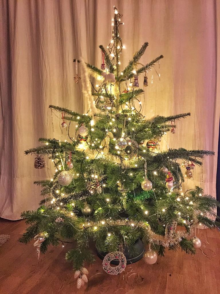 My Christmas tree.  by cocobella