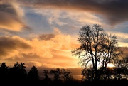 16th Dec 2018 - dusk