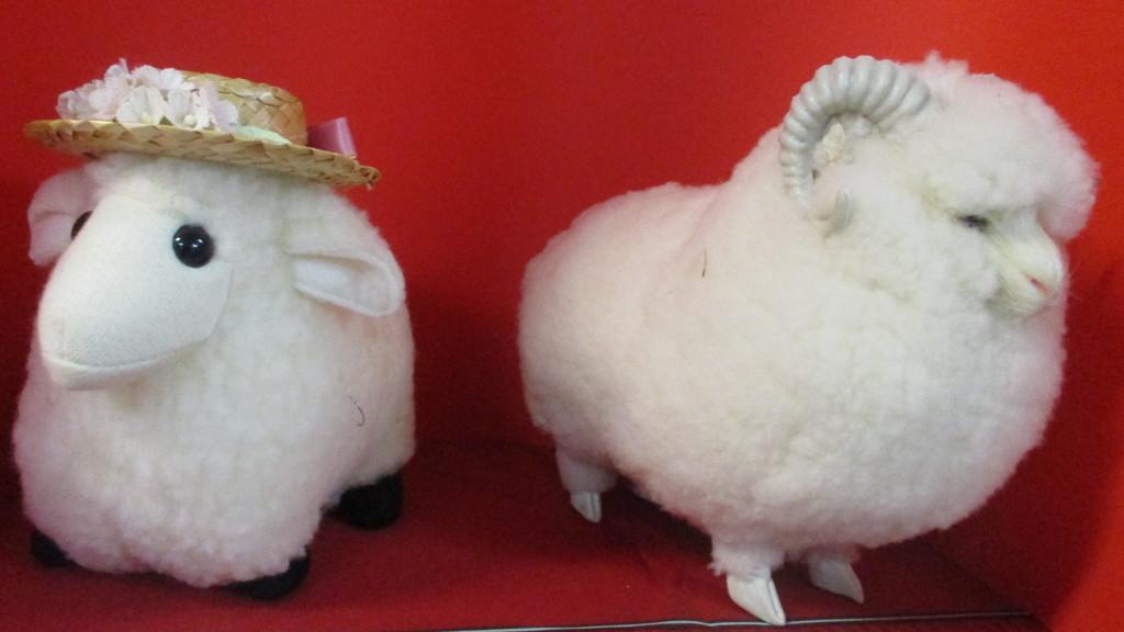 Two woolly sheep Australian by 777margo