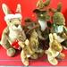 Tenth day of Christmas 10 Bush Kangaroos