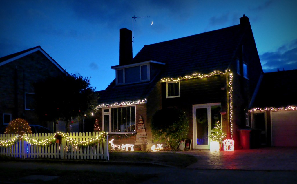 All lit up by judithdeacon