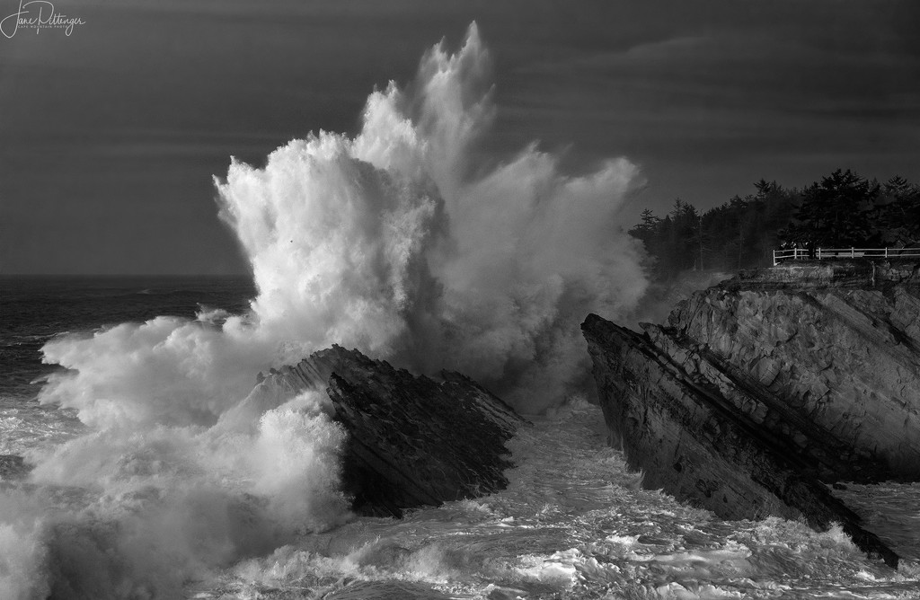 Big Surf at Shore Acres B and W by jgpittenger