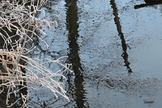 Frosty Reflections by radiogirl