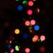 Staring at the Christmas tree
