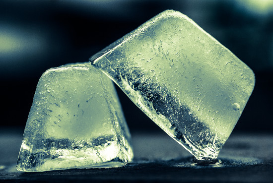 (Day 307) - Iced by cjphoto