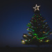 The Christmas tree at the beach
