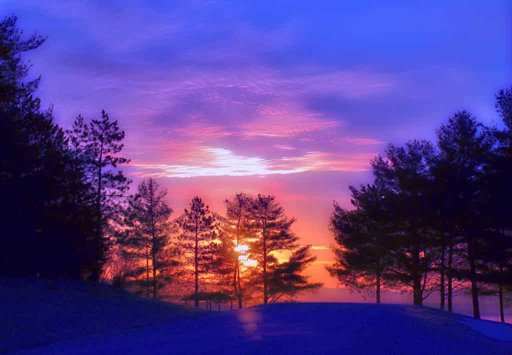 Sunrise Paints the Sky in Pinks by lynnz