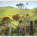New  Zealand Christmas Tree....