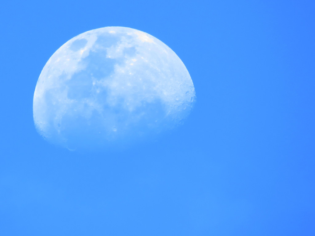 daytime moon by koalagardens