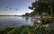 19th Dec 2018 - Jamaican Paradise