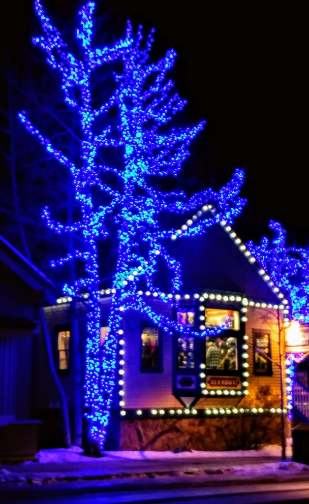 A Blue Christmas by harbie