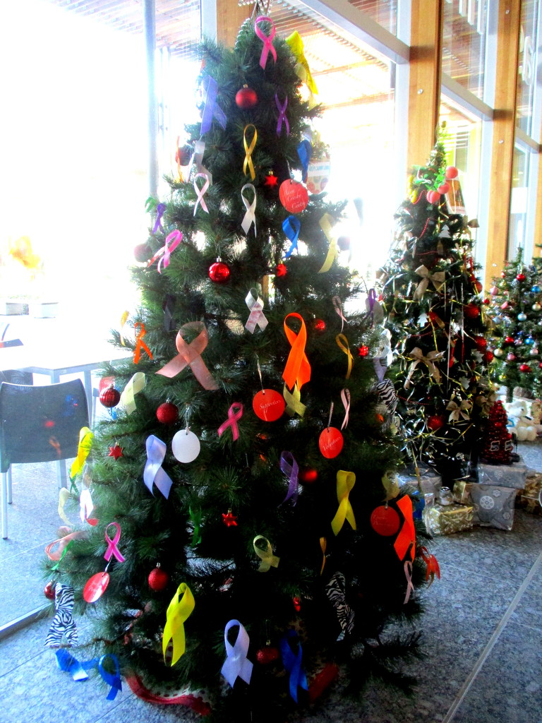 Hearts & bows decorate this tree at the Sunshine Coast Hospital   Queensland by 777margo