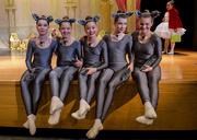 20th Dec 2018 - Wolf Dancers