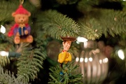 16th Dec 2018 - Woody_In_The_Tree