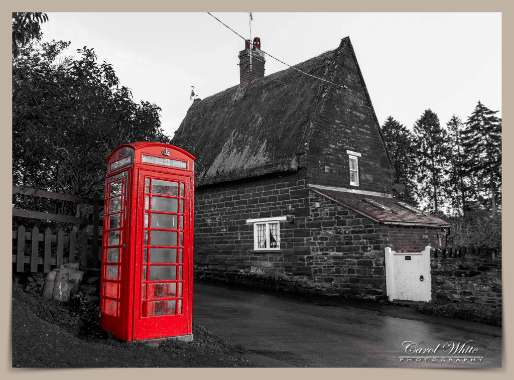 The Village Telephone Box by carolmw