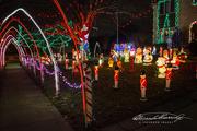 17th Dec 2018 - Neighborhood fun