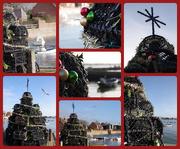 22nd Dec 2018 - Lobster Pot Tree