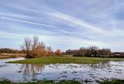 21st Dec 2018 - Waterlogged