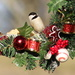 Cute Christmas Ornament by cjwhite