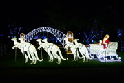 24th Dec 2018 - Australian Santa