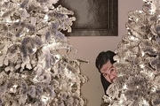 21st Dec 2018 - Christmas Bugger