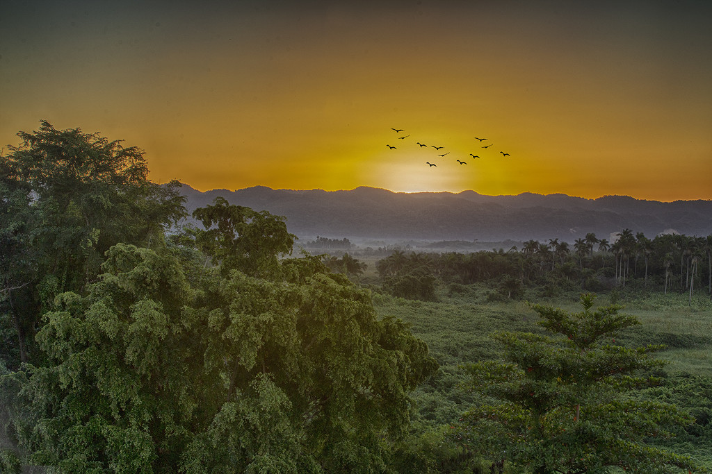 Goodbye Jamaican Sunrise ... by pdulis