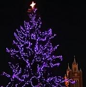 25th Dec 2018 - Christmas Eve, Albuquerque, New Mexico, USA