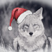 Merry Christmas Coywolf by kareenking